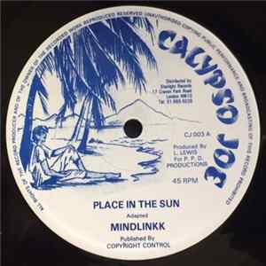 Mindlinkk - Place In The Sun